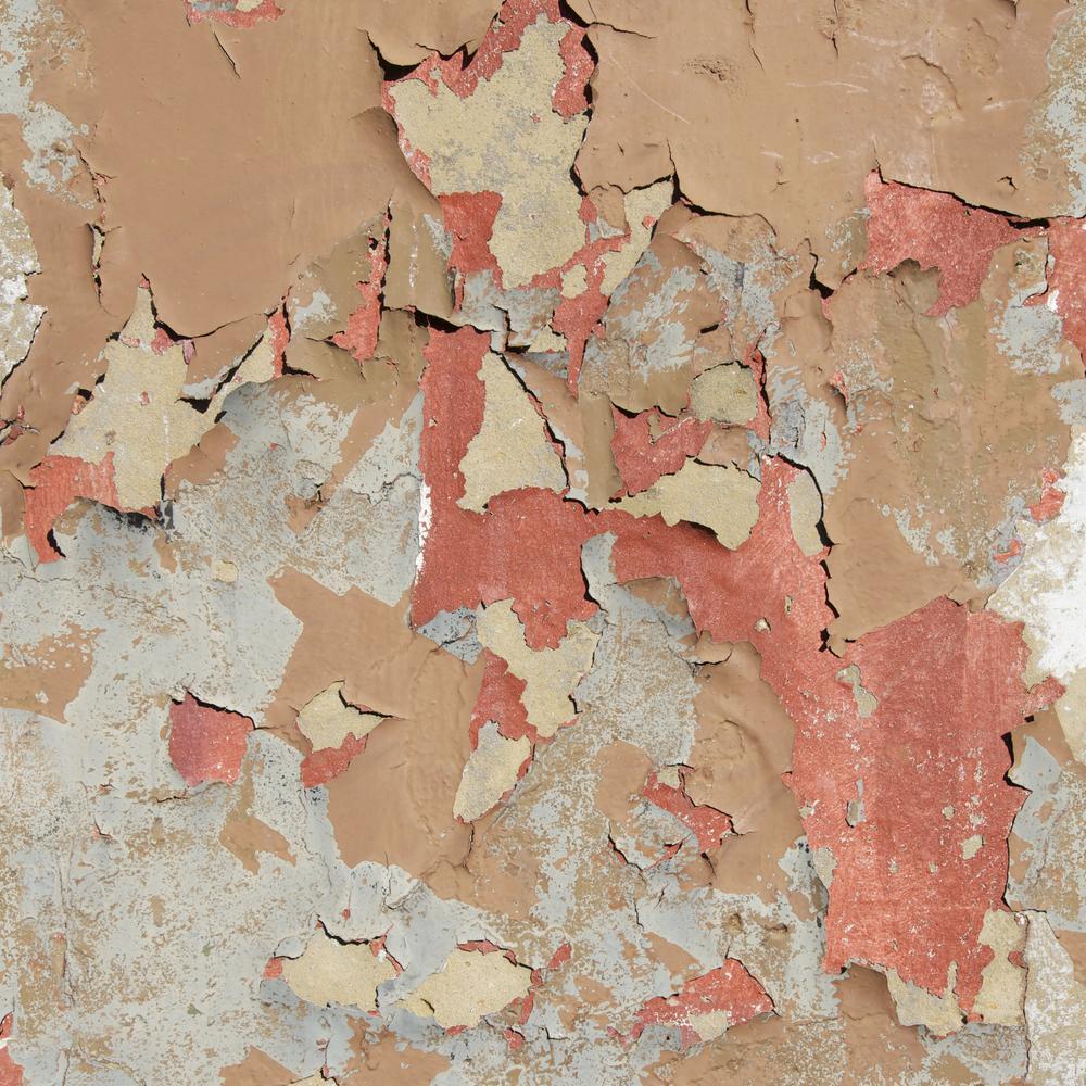 Peeling Paint Ella Doran Wallpaper Nz Artisan