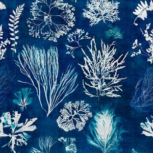 Algae - Navy Blue image