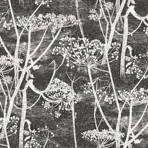 Cow Parsley image