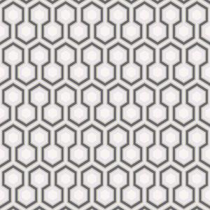 Hicks Hexagon image