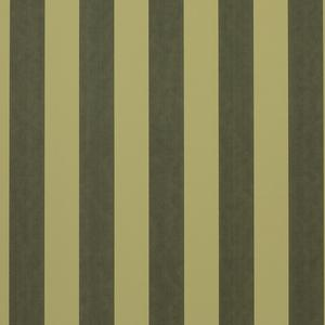 Stripe - Green image