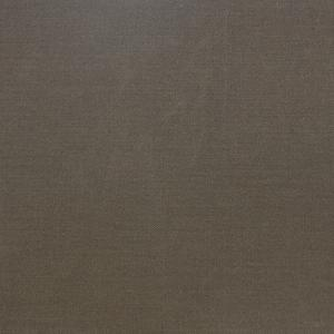 Canvas - Taupe image